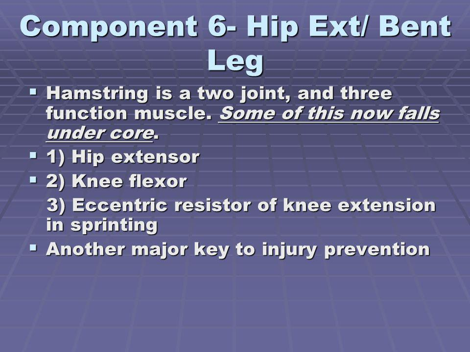 Component 6- Hip Ext/ Bent Leg