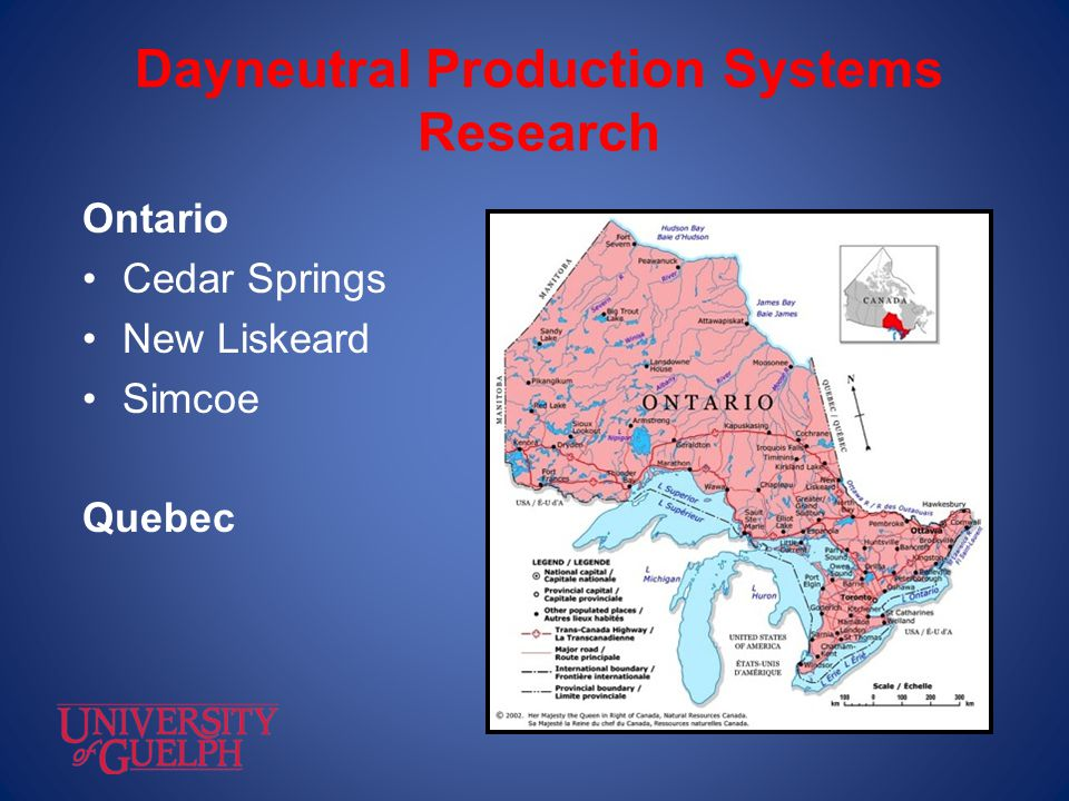 Dayneutral Production Systems Research
