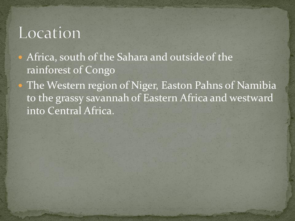 Location Africa, south of the Sahara and outside of the rainforest of Congo.