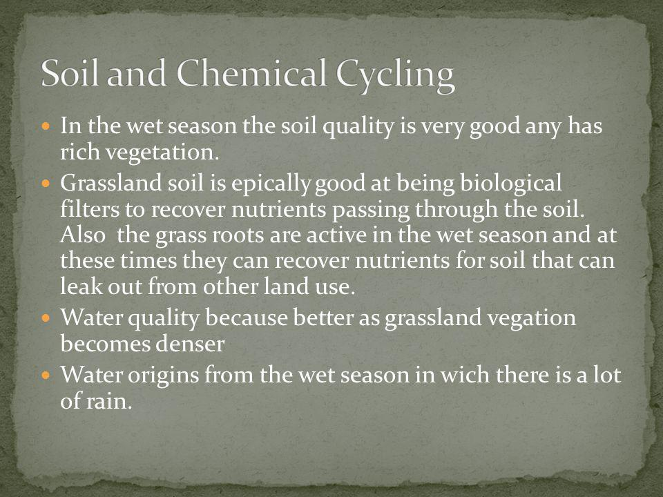 Soil and Chemical Cycling