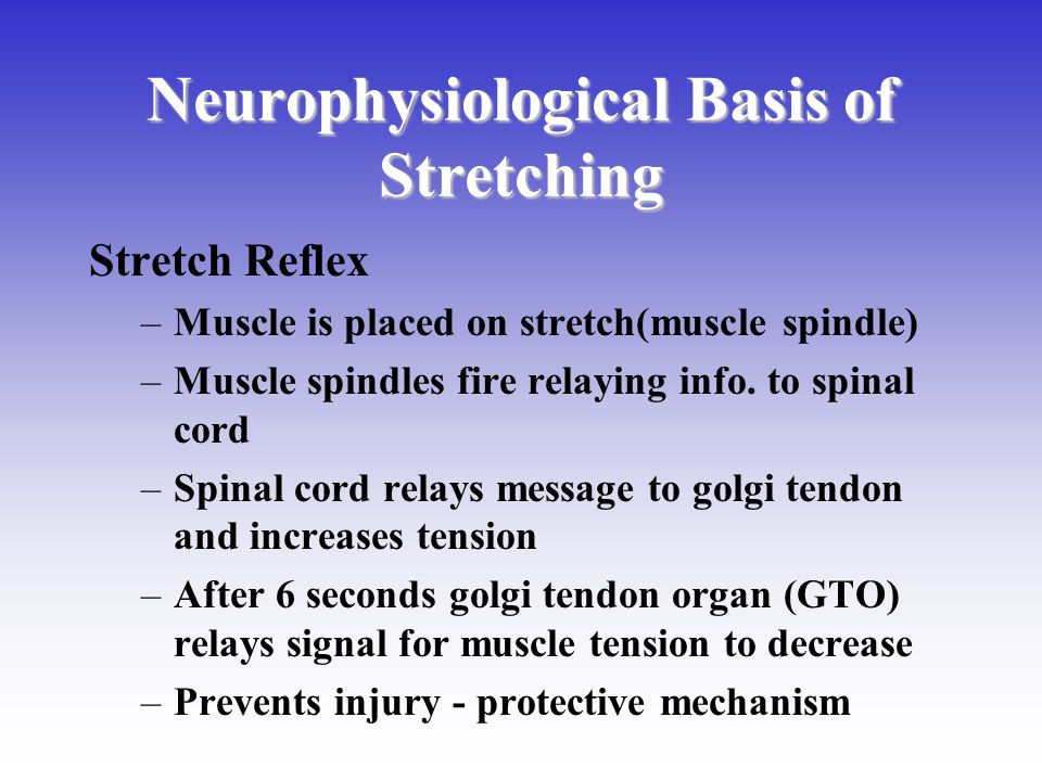 Neurophysiological Basis of Stretching