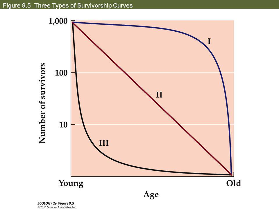 Population growth and regulation ppt video online download 17 figure 95 three types of survivorship curves ccuart Image collections