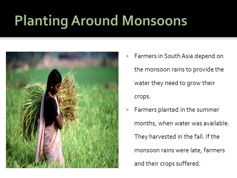 Planting Around Monsoons