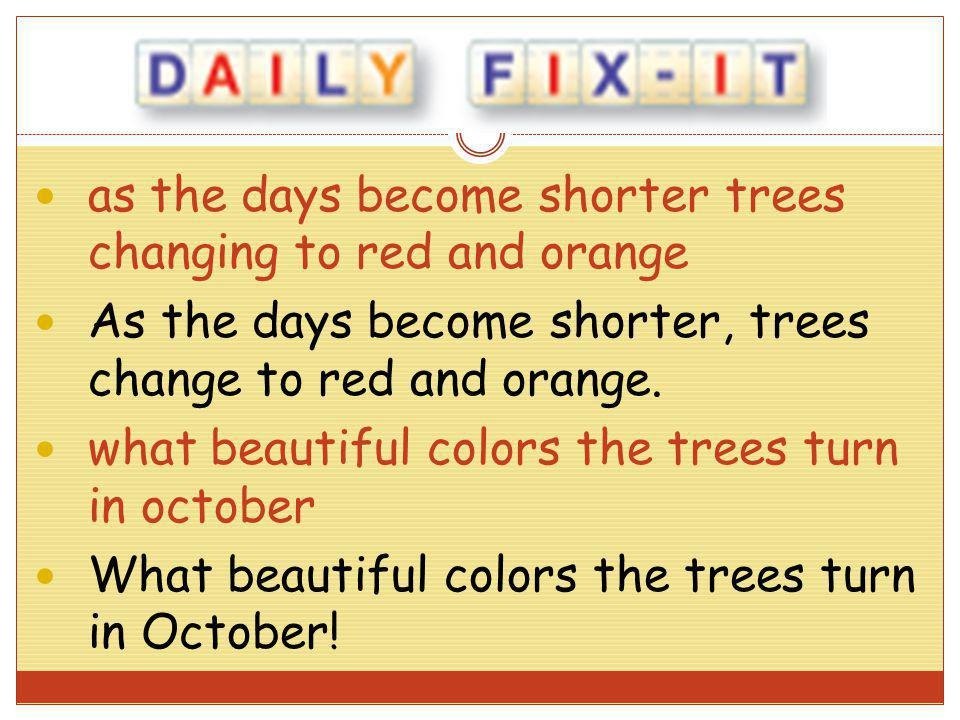 as the days become shorter trees changing to red and orange