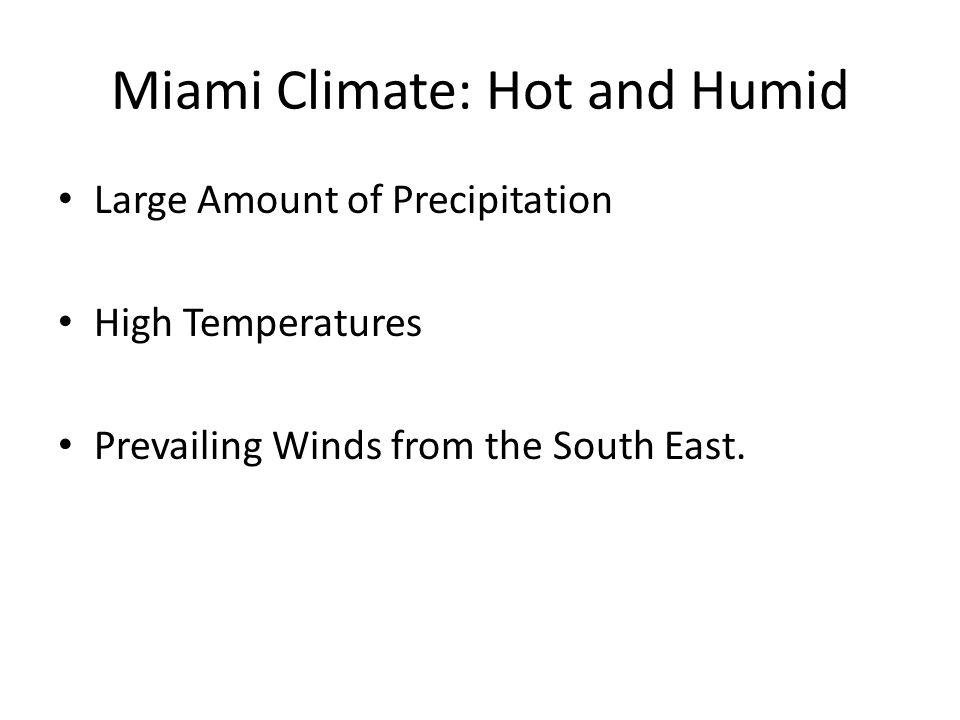 Miami Climate: Hot and Humid