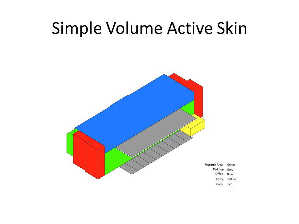 Simple Volume Active Skin