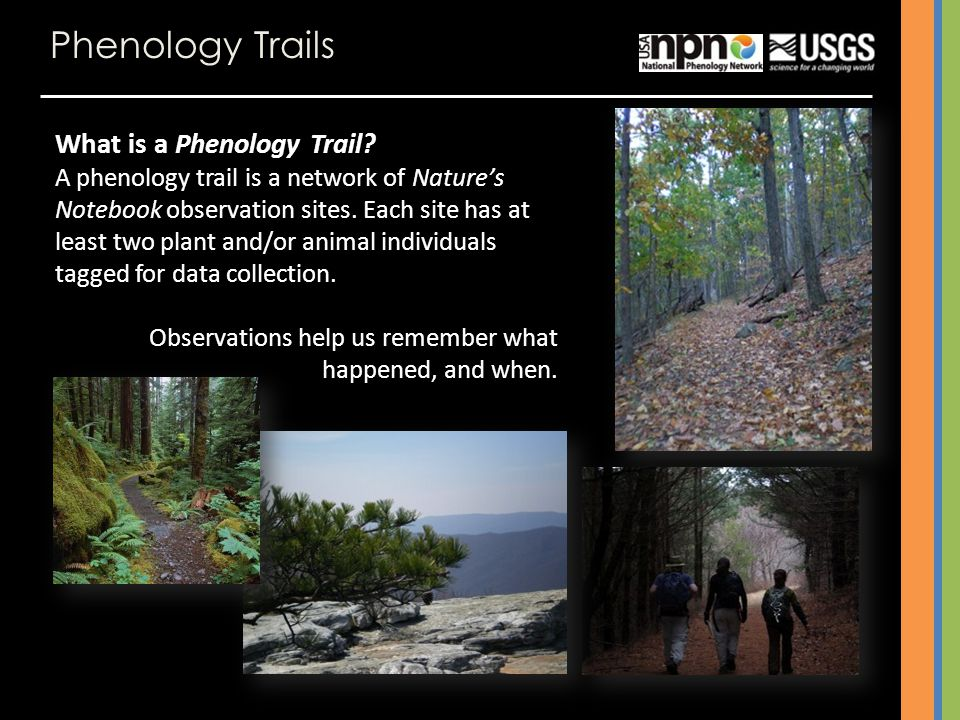 Phenology Trails What is a Phenology Trail