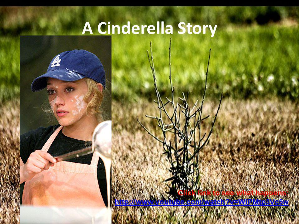 A Cinderella Story Click link to see what happens: http://www.youtube.com/watch v=WIPMtp3Vc5w