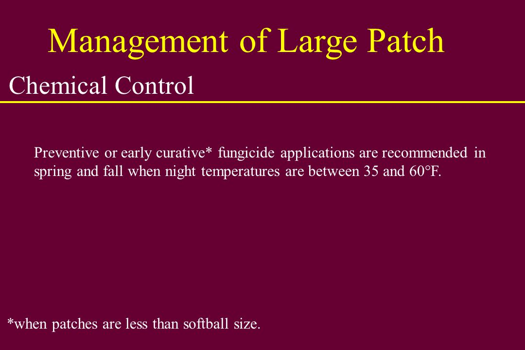 Management of Large Patch