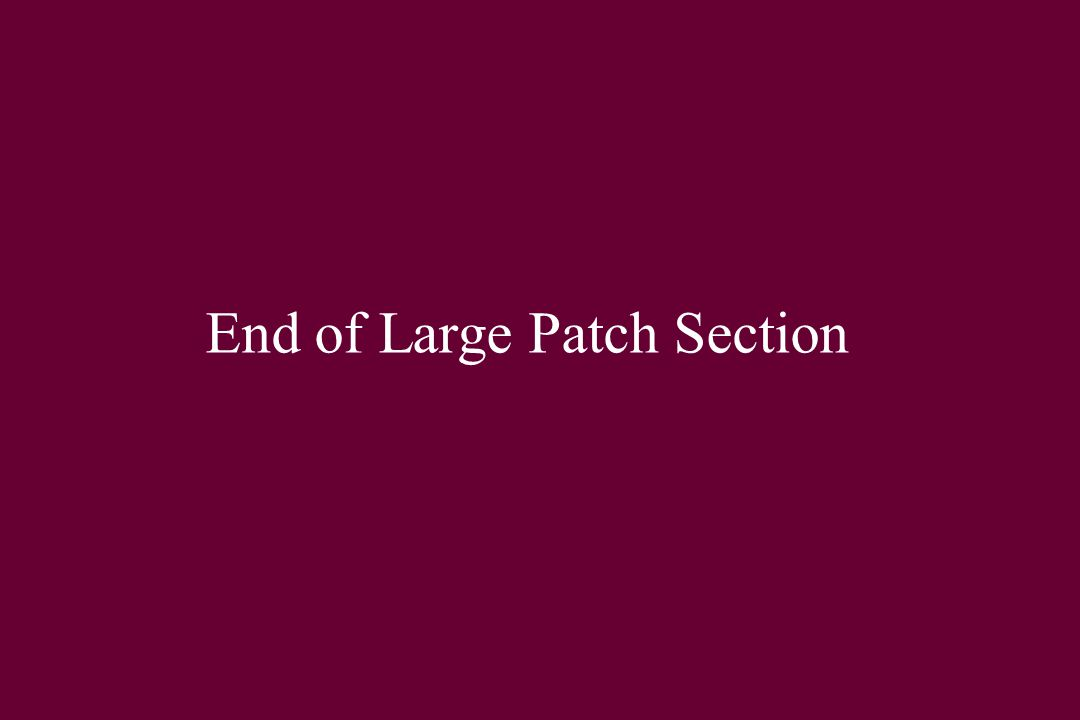 End of Large Patch Section