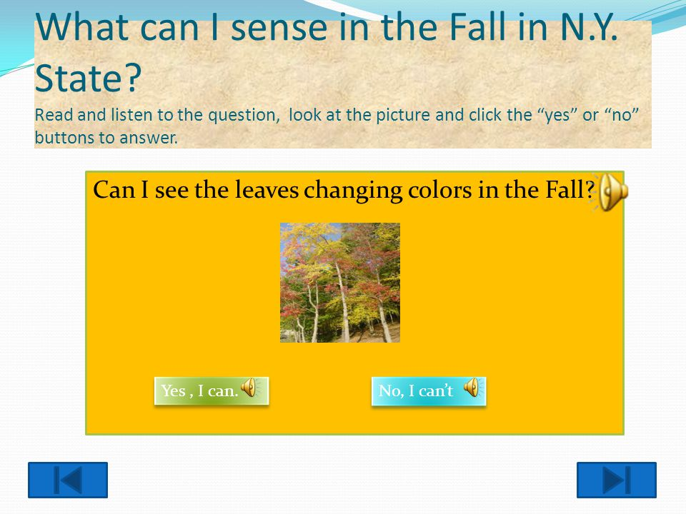 What can I sense in the Fall in N. Y. State