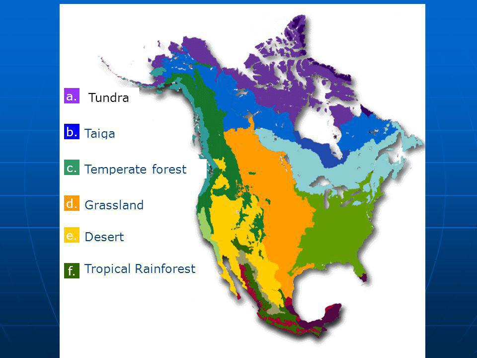 a. Tundra. a. b. Taiga. nothing. c. Temperate forest. Temperate forest. d. Grassland. Temperate forest.