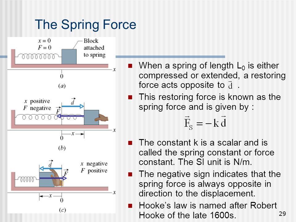 The Spring Force When a spring of length L0 is either compressed or extended, a restoring force acts opposite to .