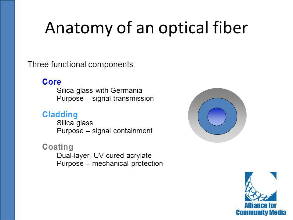 Anatomy of an optical fiber