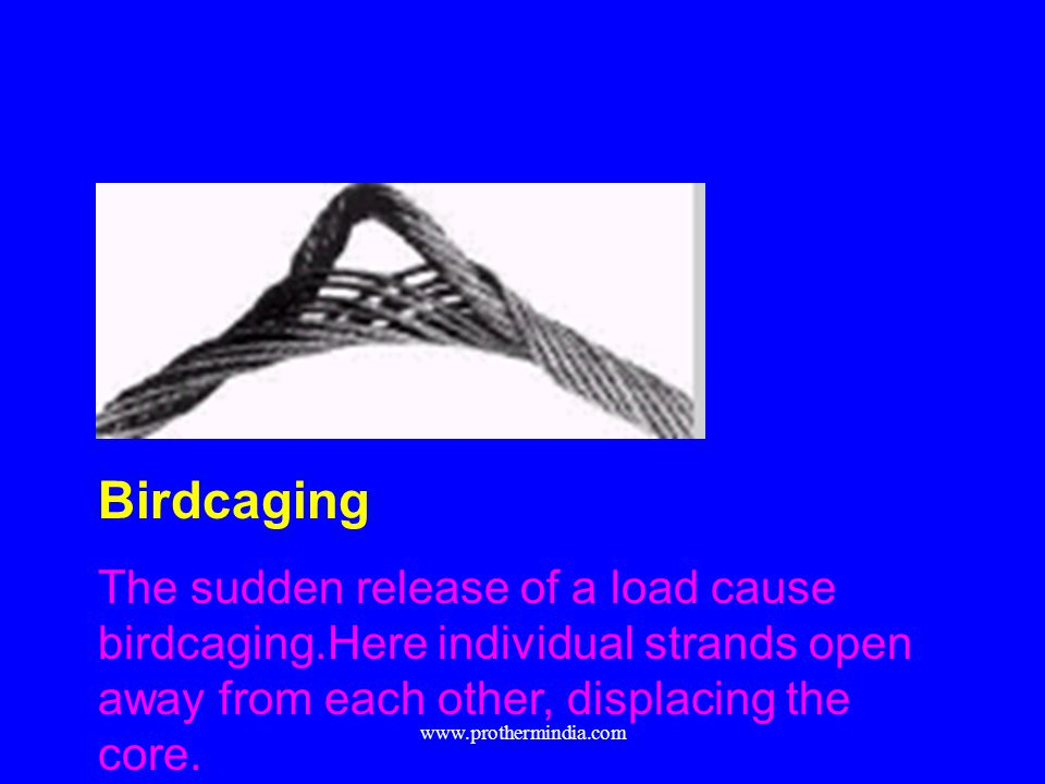 Birdcaging The sudden release of a load cause birdcaging.Here individual strands open away from each other, displacing the core.