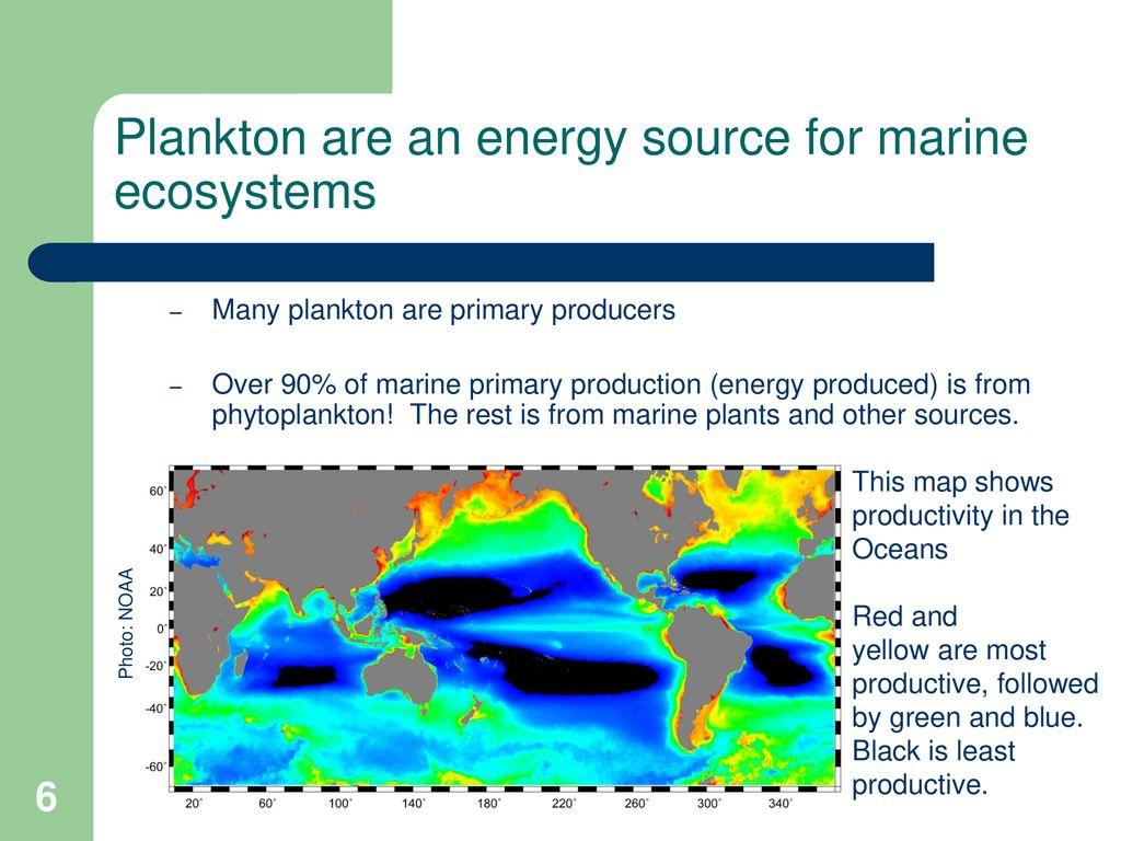 Lesson 17 Plankton Marine Biology Ppt Download [ 768 x 1024 Pixel ]