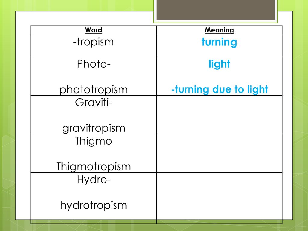 Tropism We will: Describe the effects of external stimuli on