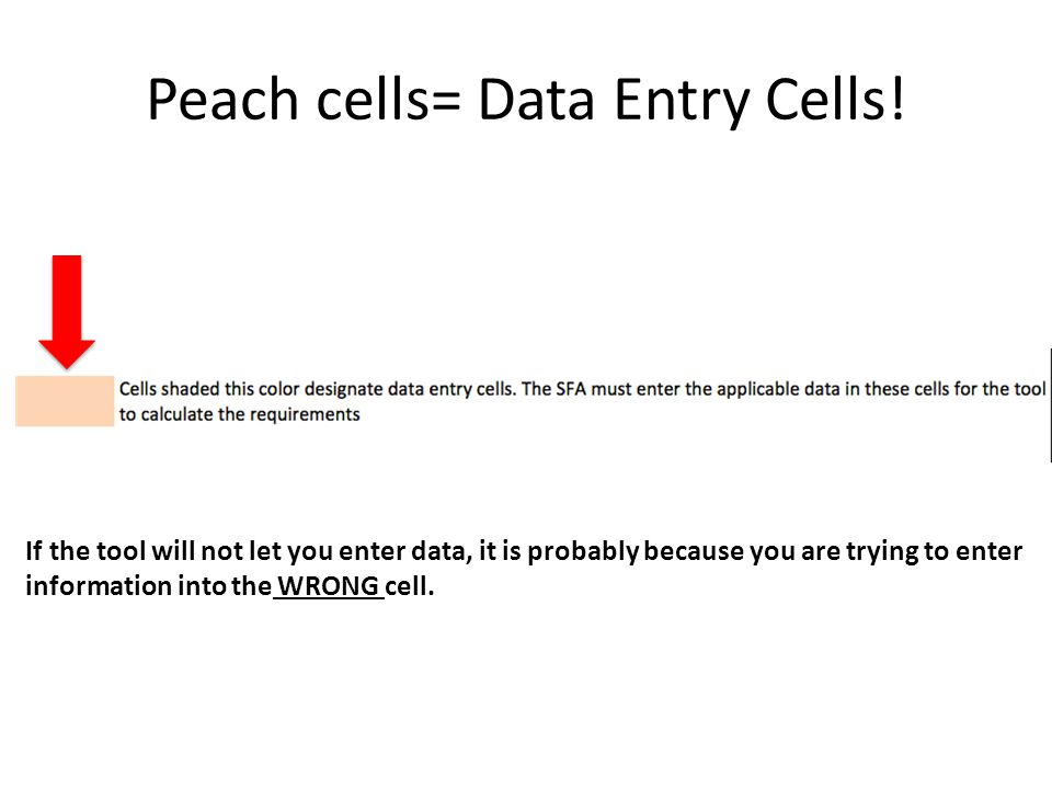 Peach cells= Data Entry Cells!