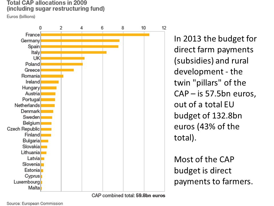 In 2013 the budget for direct farm payments (subsidies) and rural development - the twin pillars of the CAP – is 57.5bn euros, out of a total EU budget of 132.8bn euros (43% of the total).