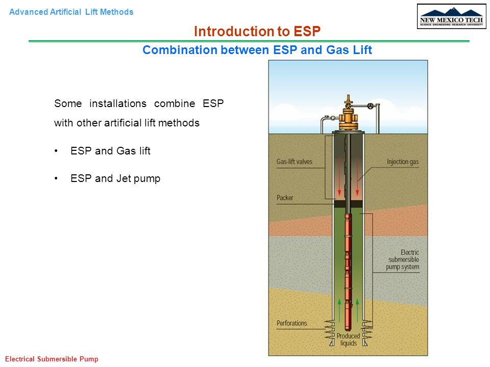 Combination between ESP and Gas Lift