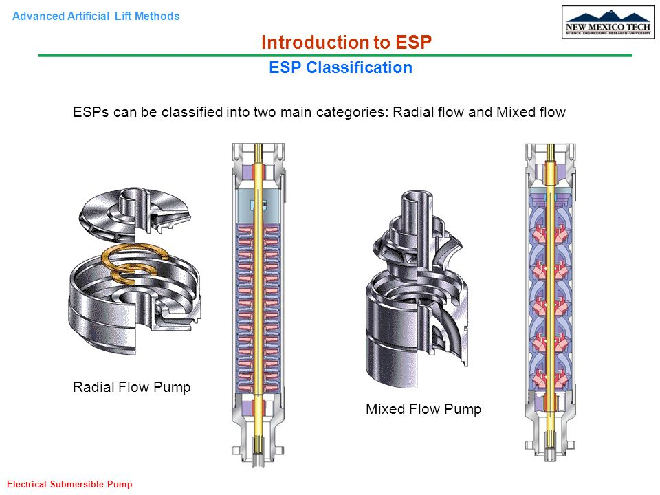 Introduction to ESP ESP Classification