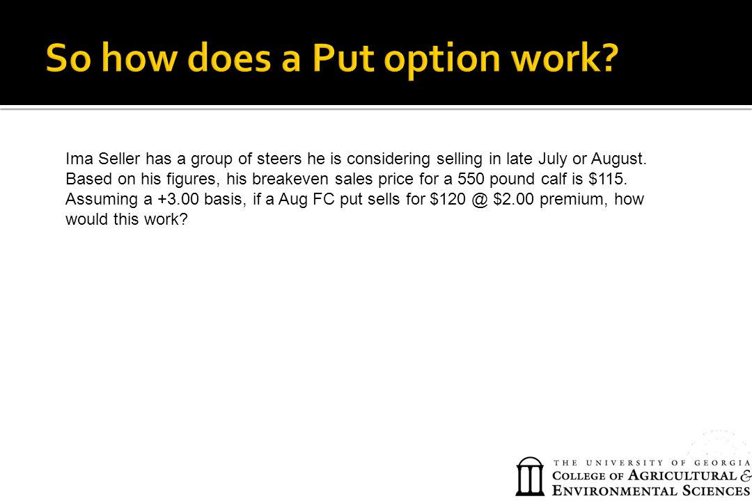 So how does a Put option work