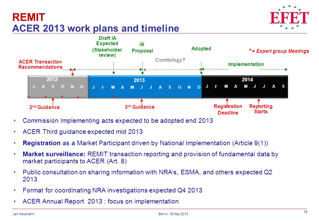 REMIT ACER 2013 work plans and timeline