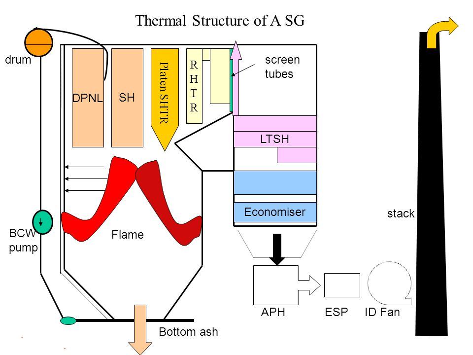 Thermal Structure of A SG
