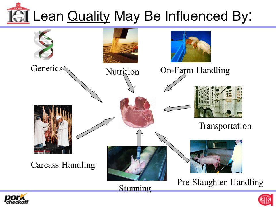 Lean Quality May Be Influenced By: