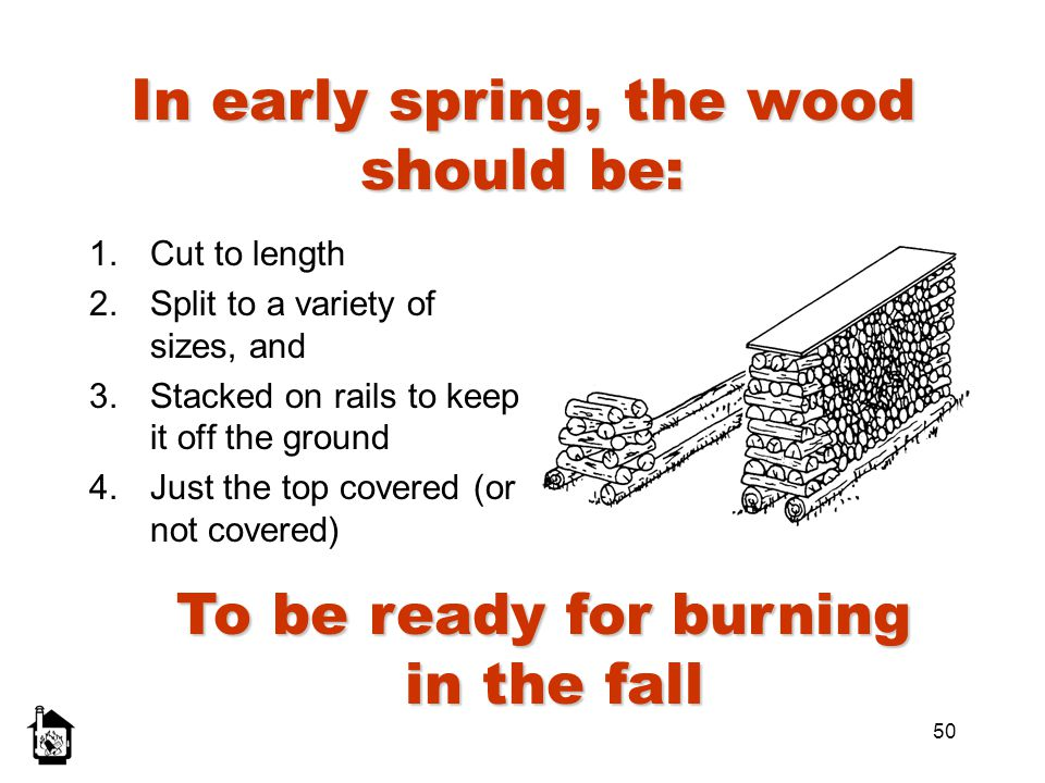 In early spring, the wood should be: