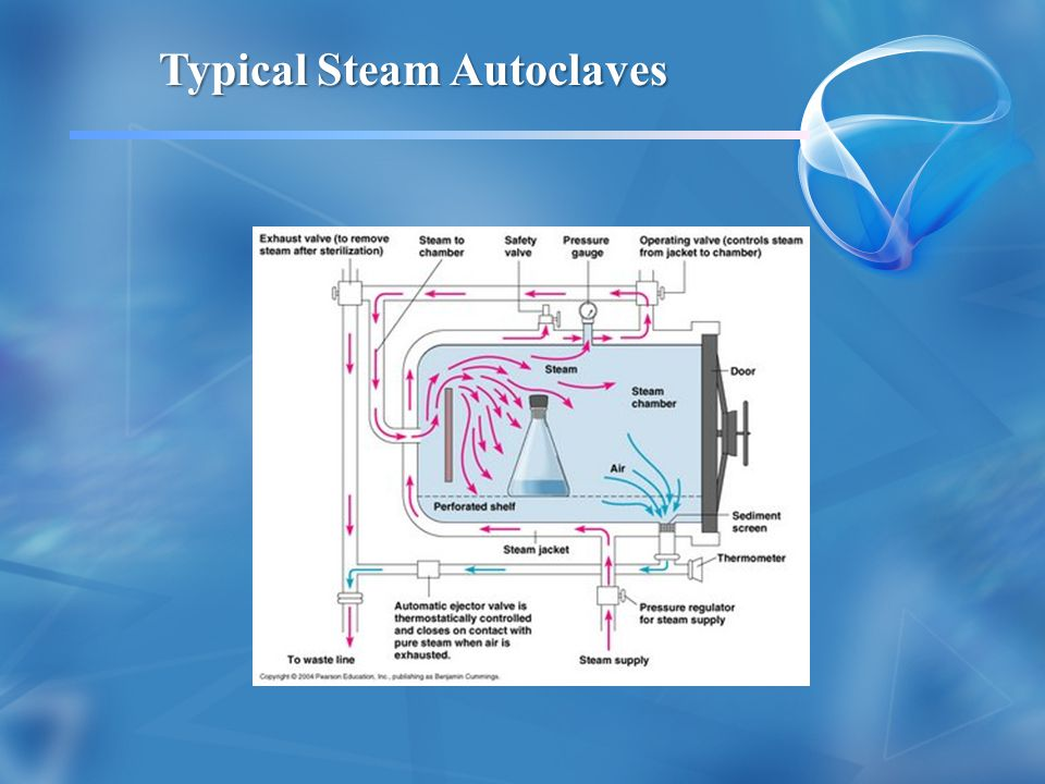 Typical Steam Autoclaves