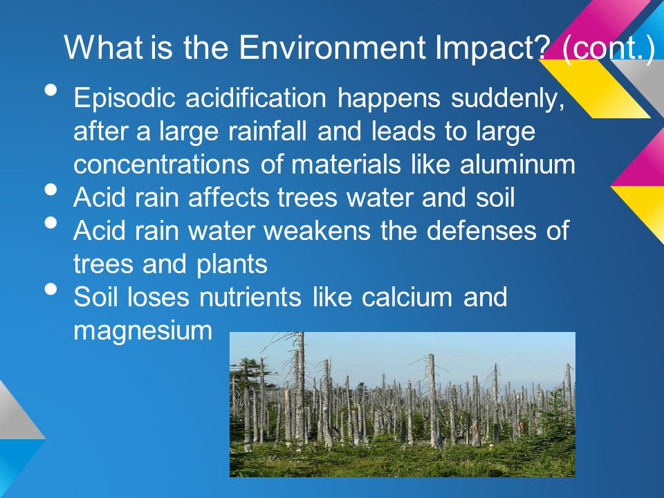 What is the Environment Impact (cont.)