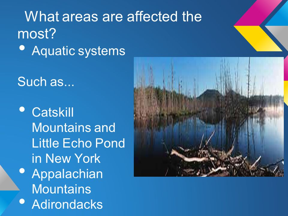 What areas are affected the most