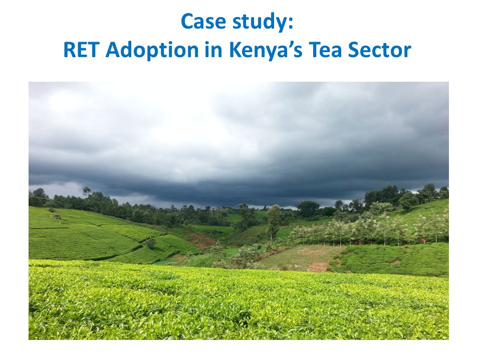 Case study: RET Adoption in Kenya's Tea Sector