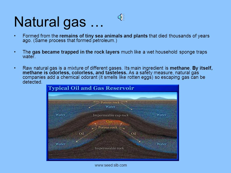 Natural gas … Formed from the remains of tiny sea animals and plants that died thousands of years ago. (Same process that formed petroleum.)