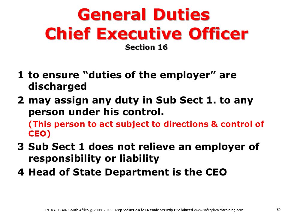 General Duties Chief Executive Officer Section 16