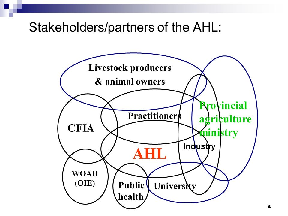 Stakeholders/partners of the AHL: