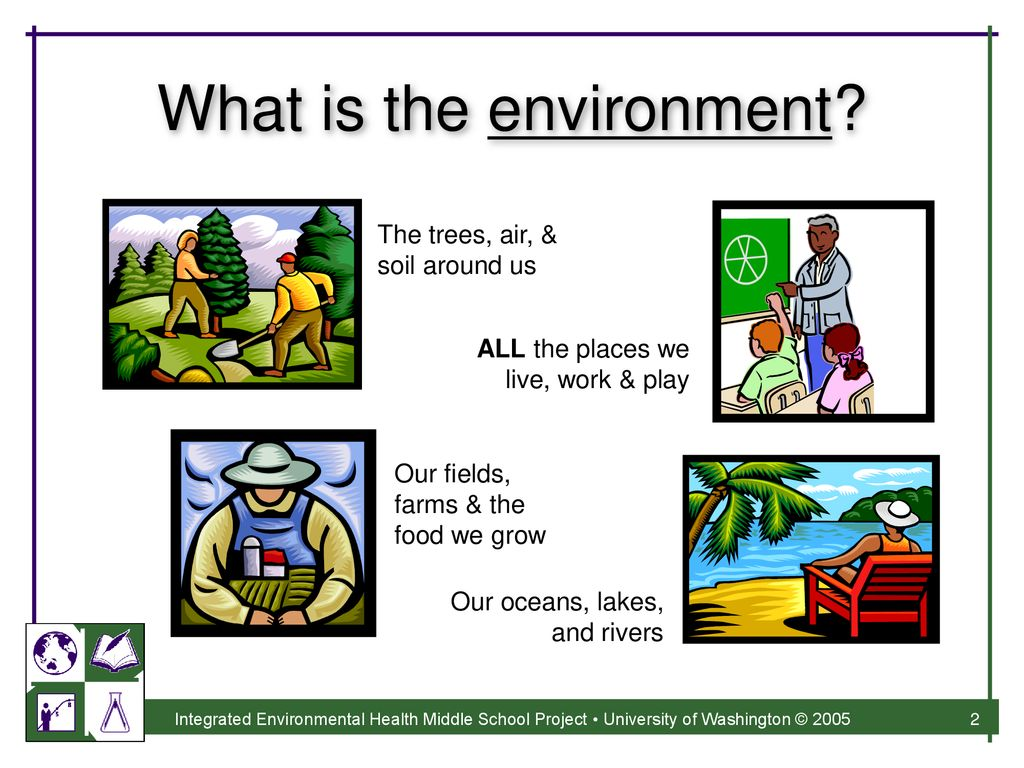 What is Environmental Health? - ppt download