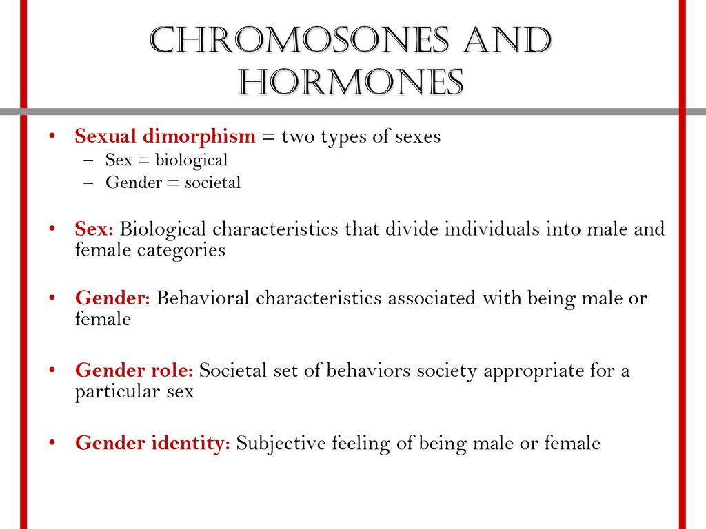 Hormonal status bulls and sexual dimorphism