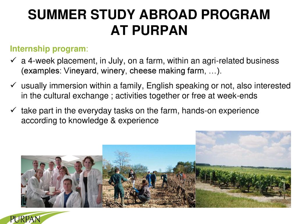 STUDY IN FRANCE SUMMER ppt download