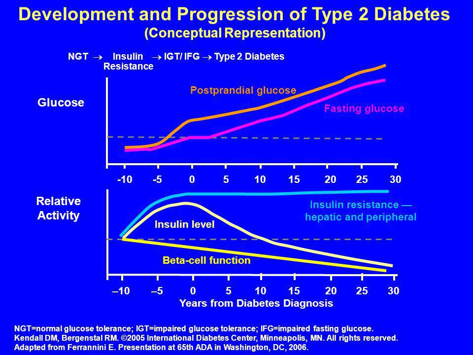 Development and Progression of Type 2 Diabetes (Conceptual Representation)