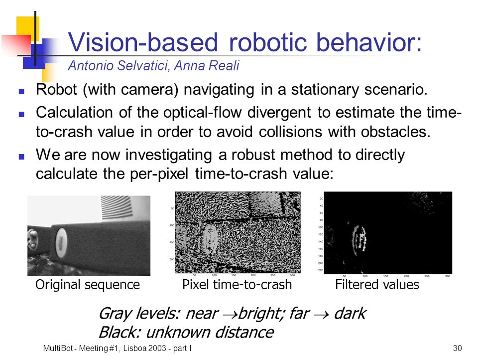 Vision-based robotic behavior: Antonio Selvatici, Anna Reali