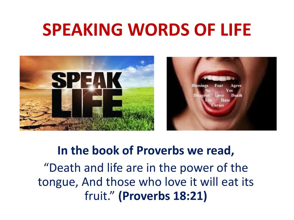In the book of Proverbs we read, - ppt download