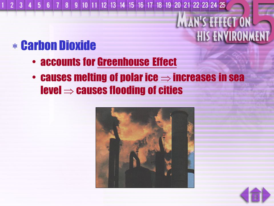 Carbon Dioxide accounts for Greenhouse Effect