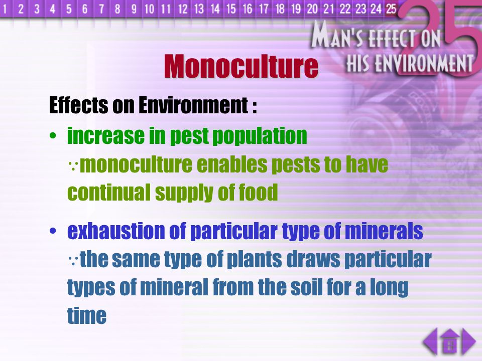 Monoculture Effects on Environment :