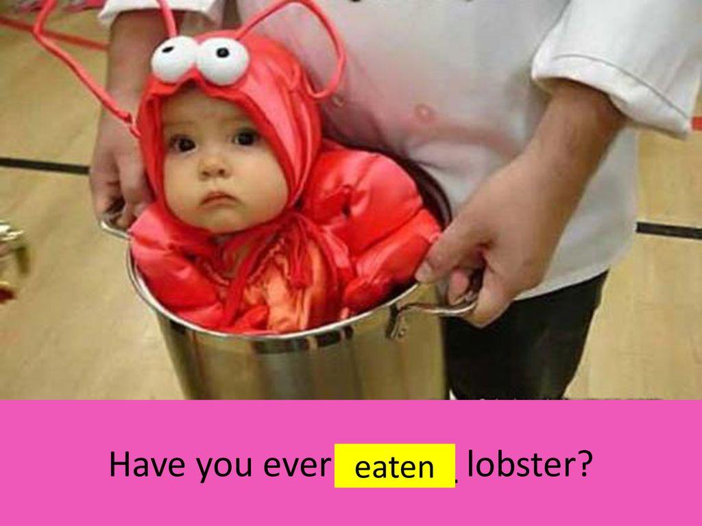 Have+you+ever+______+lobster+Have+you+ev