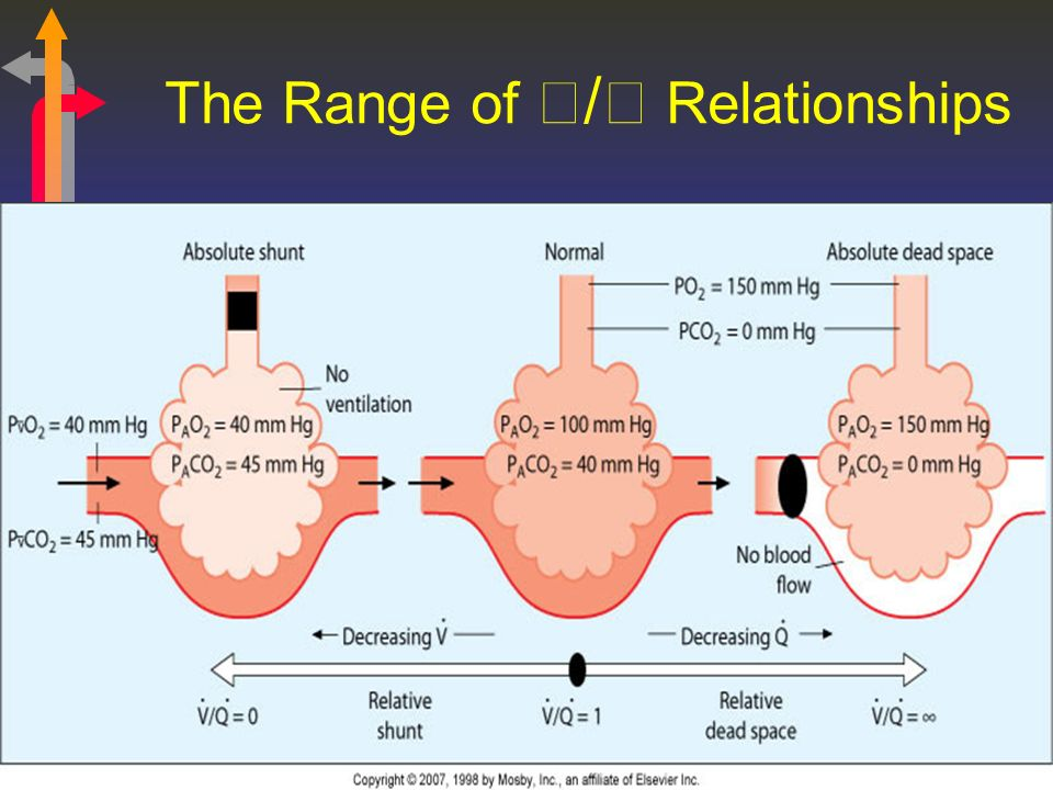 The Range of / Relationships