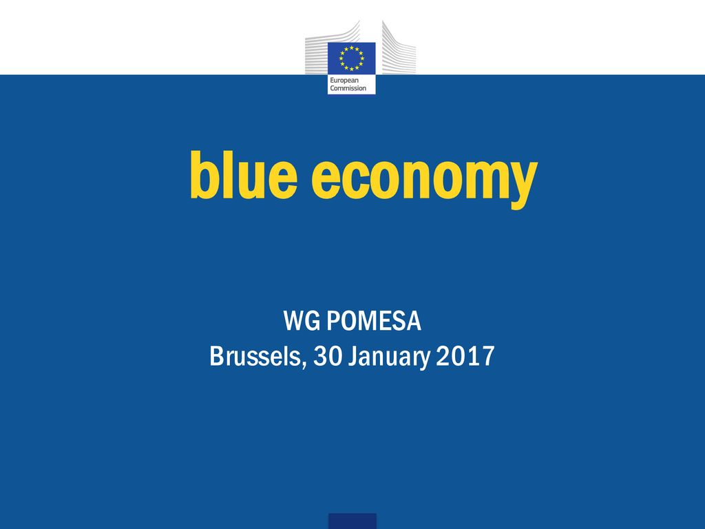 fb63954a6 WG POMESA Brussels, 30 January ppt download