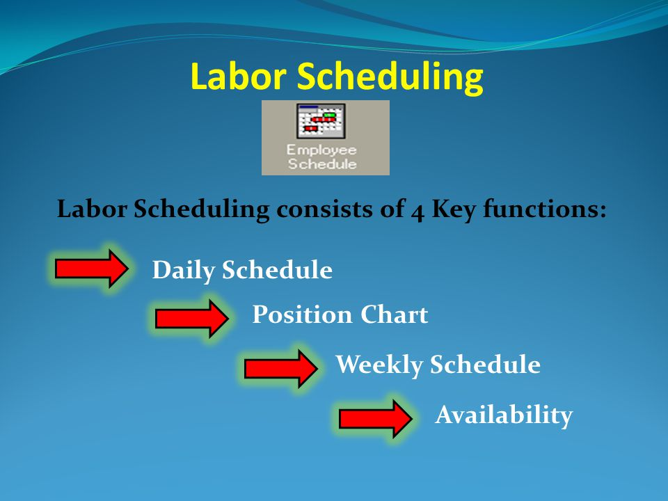 11 labor scheduling consists of 4 key functions daily schedule position chart weekly schedule availability