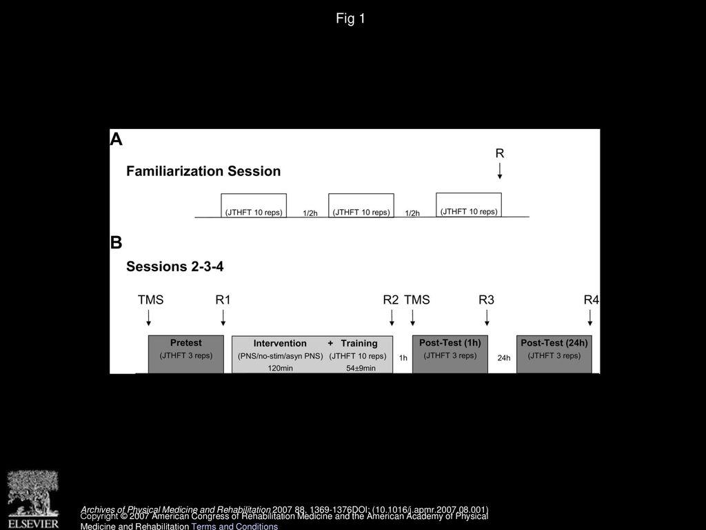 Somatosensory Stimulation Enhances the Effects of Training